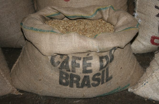Corsica Le Bon Cafe, coffee beans before roasting